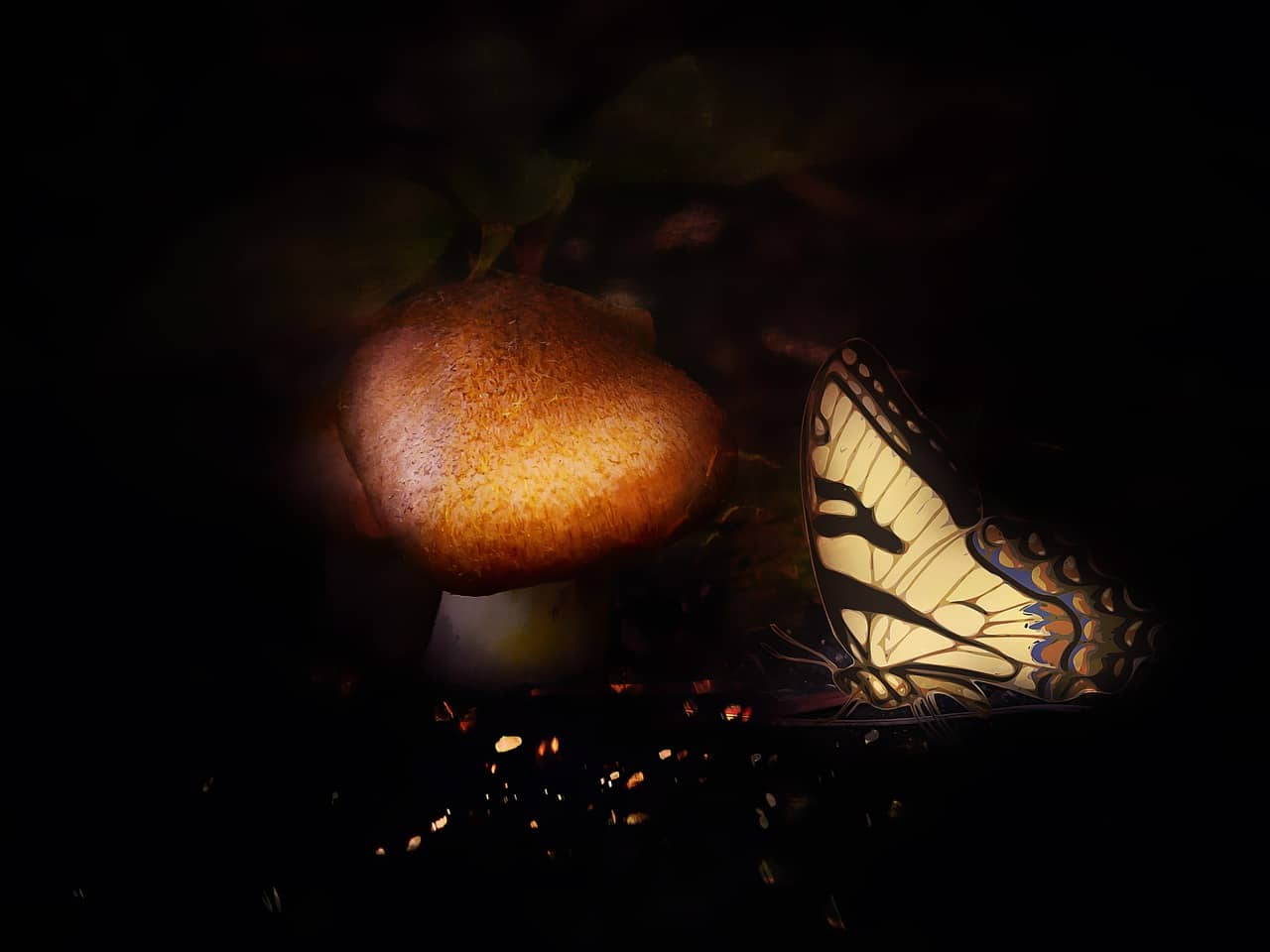 mental-papillon