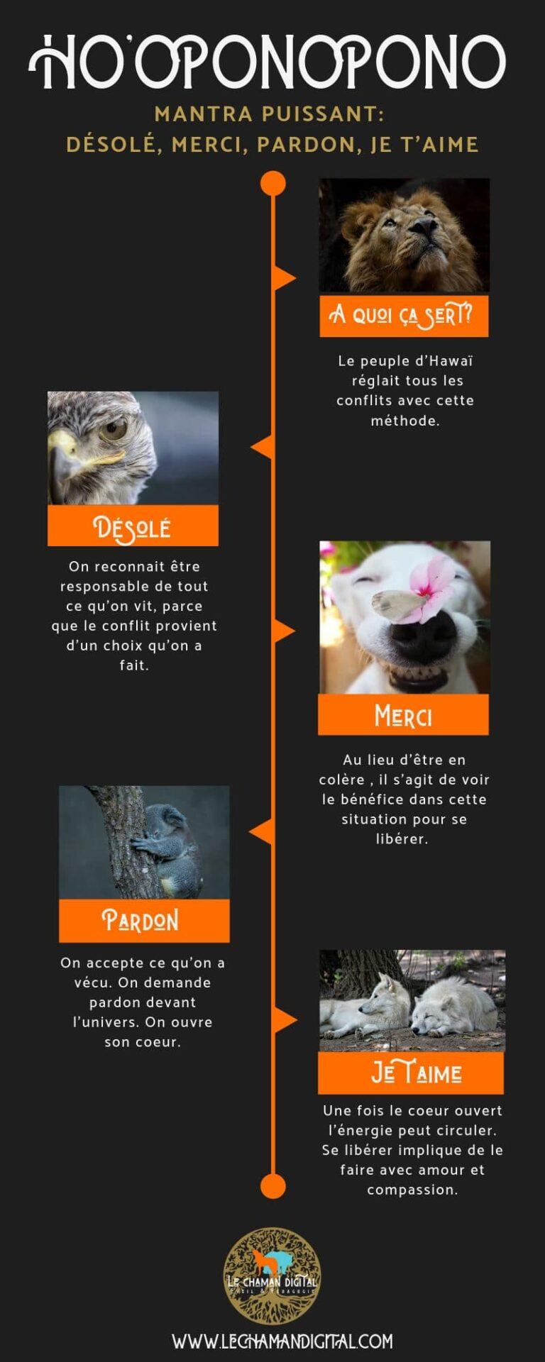 hooponopono-infographie-mantra