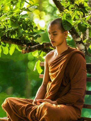 mantra-zen-lechamandigital